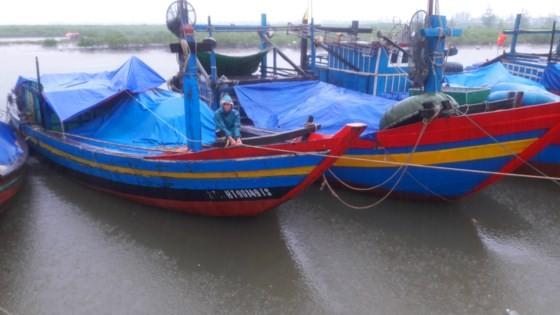 漁船回港避風。(圖源:互聯網)