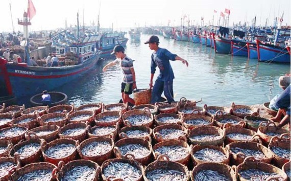 """國會常務委員會將""""展開監察在開發與確保國防安全相關的海洋經濟中從事捕撈、養殖、加工海產的個人和組織落實政策與法律""""。(示意圖源:互聯網)"""