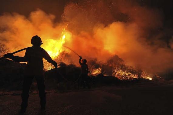 Hiện trường vụ cháy rừng. Ảnh: Tribune India