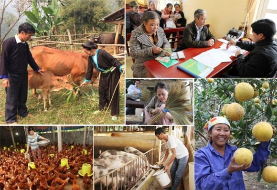 Governmental credit program helps 4.5 million poor households