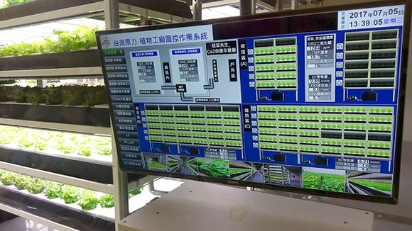 The system to monitor the development of a vegetable farm, implementing IoT in agriculture with Taiwanese technologies(Photo: SGGP)