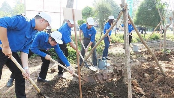 MARD launches tree -planting festival