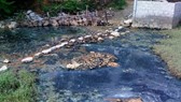 Thirteen polluters forced to remedy environment