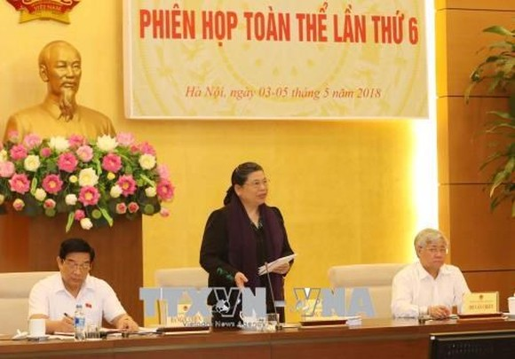 Vice NA Chairwoman Tong Thi Phong speaks at the meeting (Source: VNA)