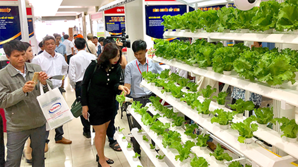 The system of organic growing of vegetables introduced in Techmart 2018. Photo by T.BA