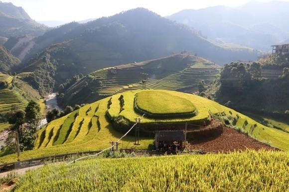 Terraced rice fields in Mu Cang Chai (Photo: VNA)