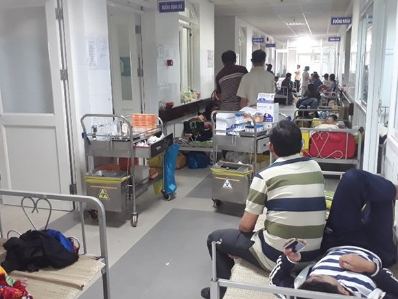Da Nang education sector popularizes information of dengue