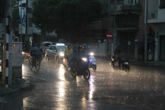 Medium- heavy rains shower whole country