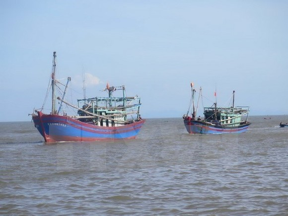 Fishing boats of Vietnam (Photo: VNA)