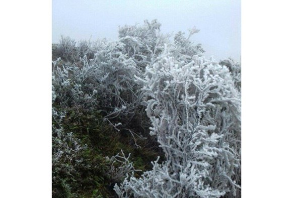 Frost covers Mau Son Mountain Peak and and Mau Son Tourism Site