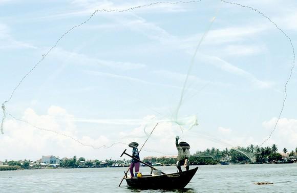Quảng Nam và Đà Nẵng: Nguy cơ thiếu nước ảnh 1