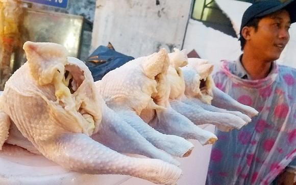圖為平盛郡吳必素街旁兜售的廉價蛋雞。(圖源:阮智)