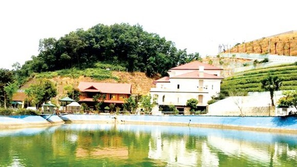 The villa of Mr. Pham Sy Quy, director of Yen Bai province's Department of Natural Resources and Environment