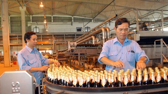 A beer production line at Sabeco (Photo: SGGP)