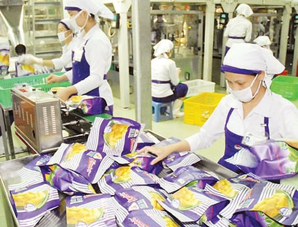 Workers processing dried jacfruit at Vinamit Company to export to Cambodia (Photo: SGGP)
