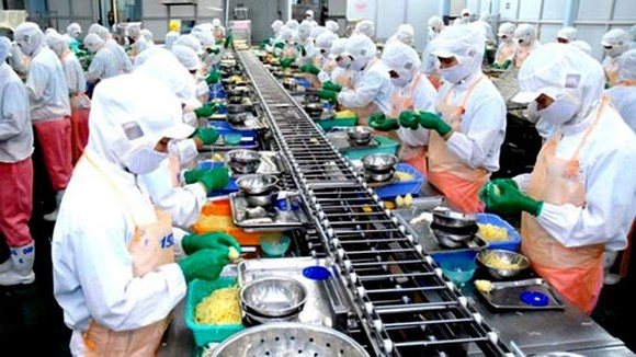 Workers processing export seafood at Hiep Phuoc industrial park, HCMC (Illustrative photo: SGGP)