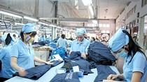 Workers at Saigon Garment 3 Company (Photo: SGGP)