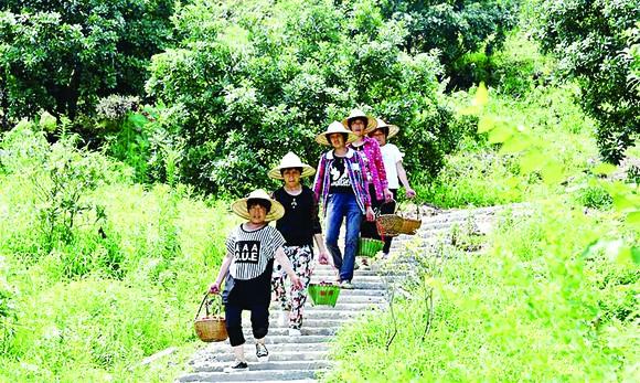 Lễ hội thu hoạch đầu tiên của Trung Quốc
