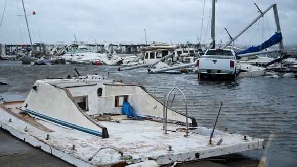 Florida tan hoang sau siêu bão Michael mạnh nhất kể từ năm 1992 ảnh 38