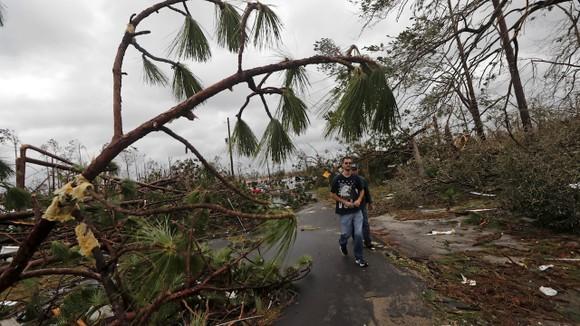 Florida tan hoang sau siêu bão Michael mạnh nhất kể từ năm 1992 ảnh 43