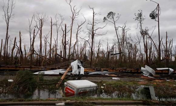 Florida tan hoang sau siêu bão Michael mạnh nhất kể từ năm 1992 ảnh 17