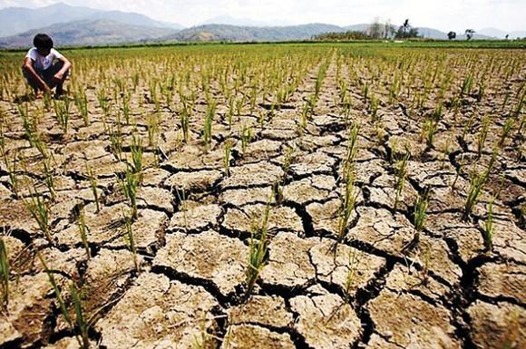 Cảnh báo El Nino xuất hiện vào cuối năm nay