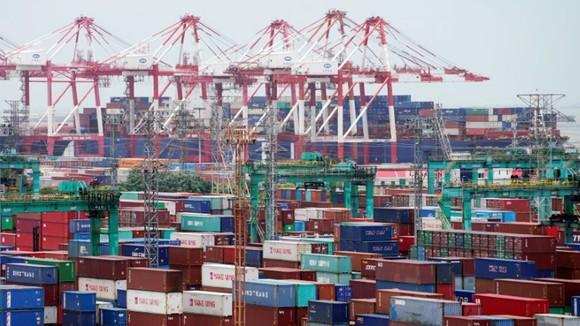 Hàng hóa tập kết tại cảng Thượng Hải, Trung Quốc. Ảnh: REUTERS