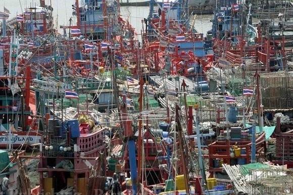 Fishing boats lay idle in port at Samut Songkhram (Bangkok Post file photo)