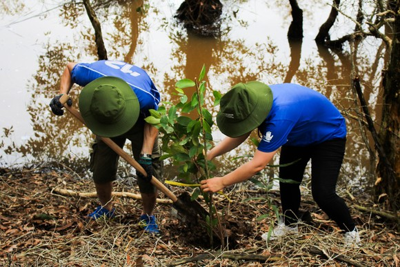 Volunteers join in the reforestation activities in Lang Sen -Photo: WWF