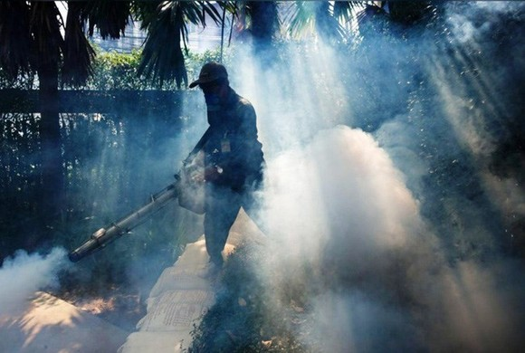 About 500 dengue fever cases have been recorded in northeastern Thailand by June 5. (Source: Reuters)