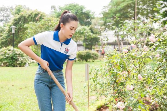 Hoa hậu Tiểu Vy về trường, tham gia buổi học đầu tiên ảnh 4