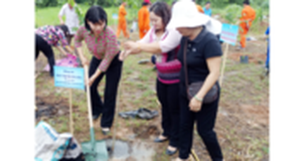 Tree planting campaign launched to save environment