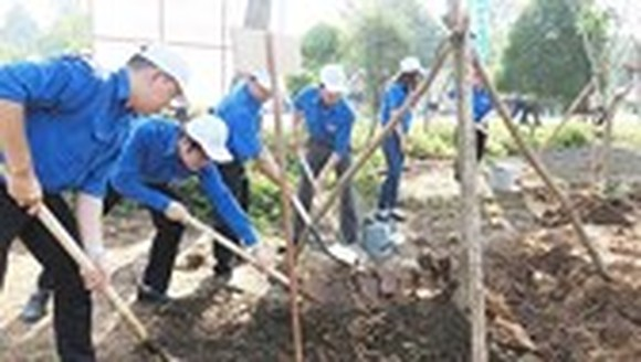 Hau Giang Province launches tree-planting festival