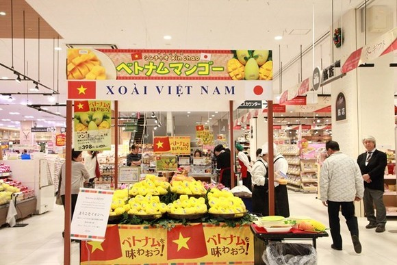 Vietnamese mangoes are sold at an Aeon supermarket in Japan (Photo: VNA)