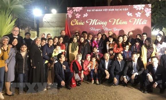 Ambassadors meet with overseas Vietnamese ahead of Tet