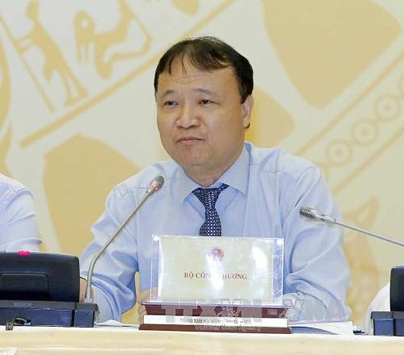 Vietnamese Deputy Minister of Industry and Trade Do Thang Hai (Photo: VNA)