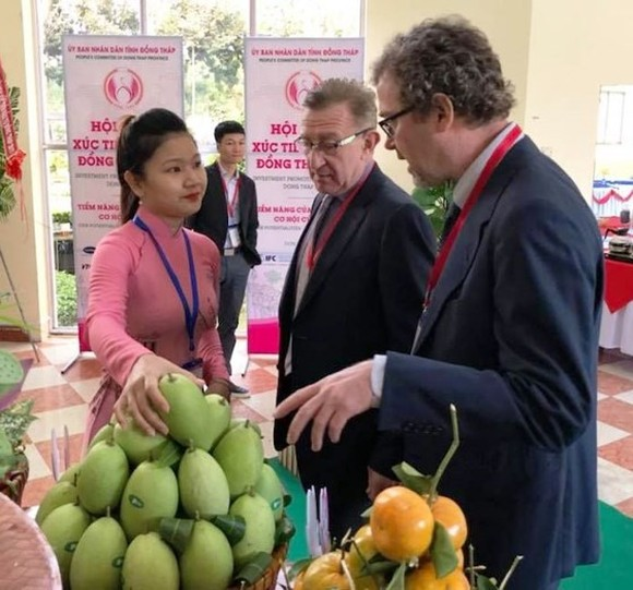 Mekong delta province exports mango to US for first time