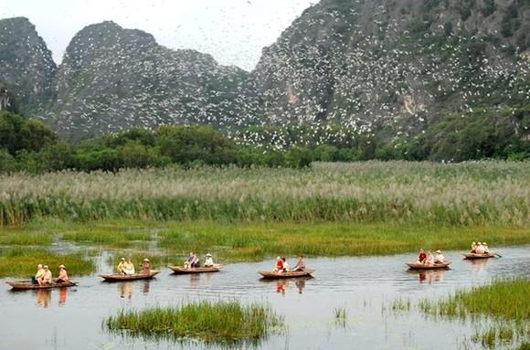 Scene at the Van Long Wetland Nature Reserve (Photo: sodulich.ninhbinh.gov.vn)