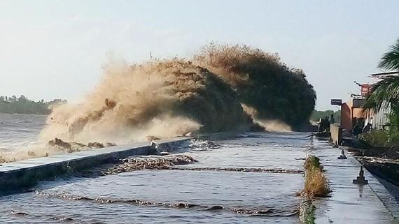 Ganh Hao Dyke in Bac Lieu Province in the Mekong detla breaks up (Photo: SGGP)
