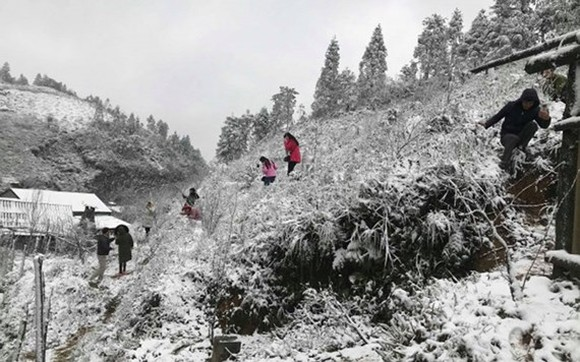 Snow covers the mountain pass of O Quy Ho, Sa Pa district, Lao Cai