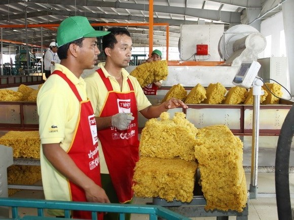 Producing rubber for export (Photo: VNA)