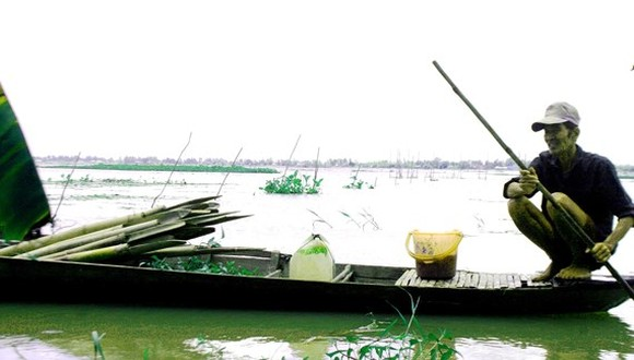 Mekong Delta should actively cope with flooding after downpours
