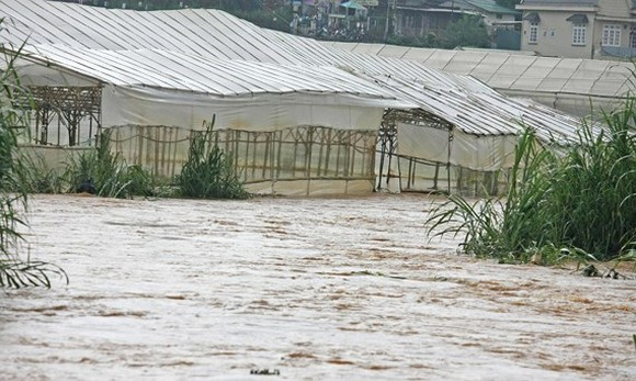 Da Lat braces for historical record-breaking rainfall several day