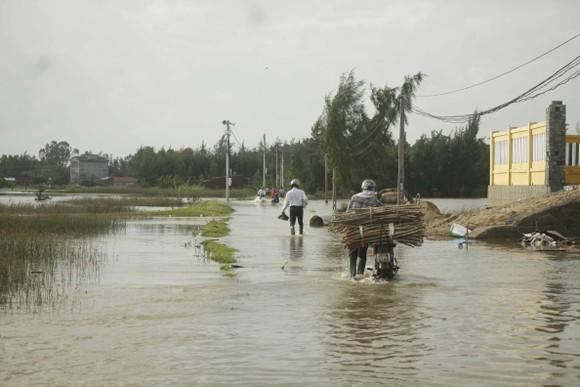 Lũ trên các sông Quảng Ngãi đạt đỉnh và đang xuống, nhà dân tốc mái đang khắc phục  ảnh 1