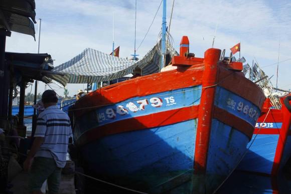 Quảng Ngãi: Chưa thực hiện lắp đặt thiết bị giám sát hành trình tàu cá ảnh 1