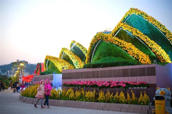 Không thể không tới Lễ hội hoa Hạ Long cuối tuần này ảnh 9