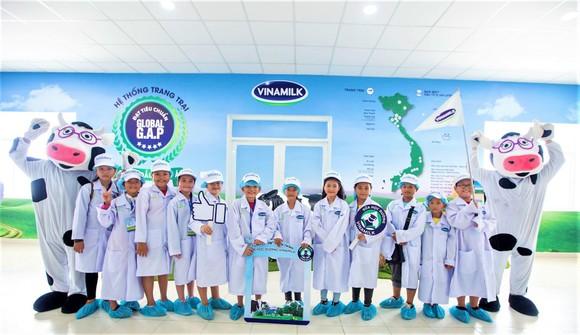 Chương trình sữa học đường phủ rộng nhiều trường học ảnh 1