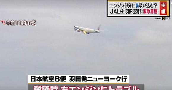 """一架日本客機""""撞鳥""""引擎起火後返機場。(圖源:互聯網視頻截圖)"""