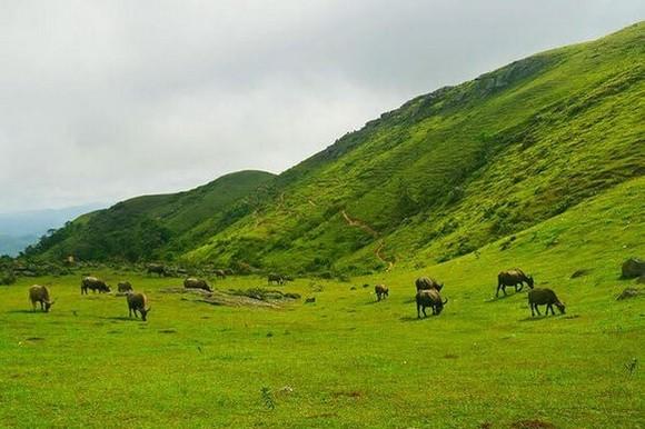 平靜迷人的同高高原。