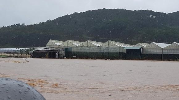 Mưa lũ làm hơn 1.350 căn nhà ở Lâm Đồng bị ngập ảnh 10